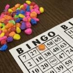 bingo-game_t20_rLokzB